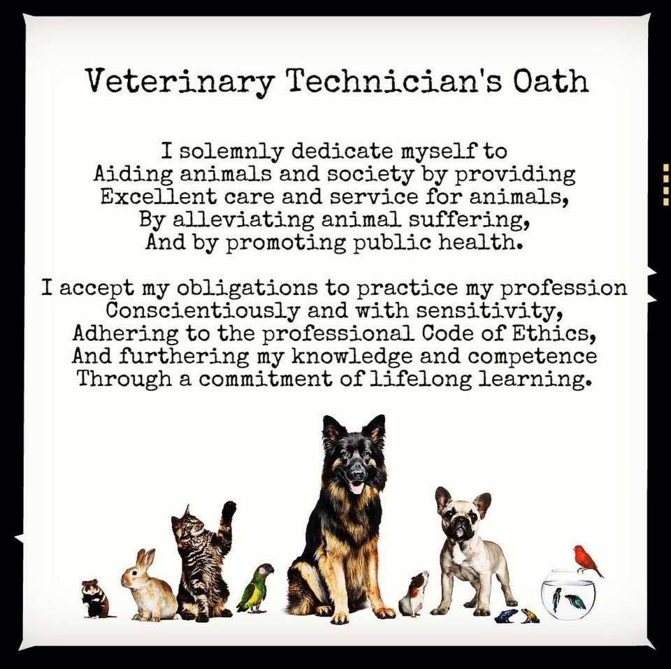 Veterinary Technician Appreciation Catlett Animal Hospital