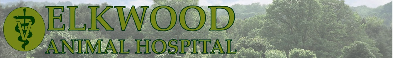 Elkwood Animal Hospital