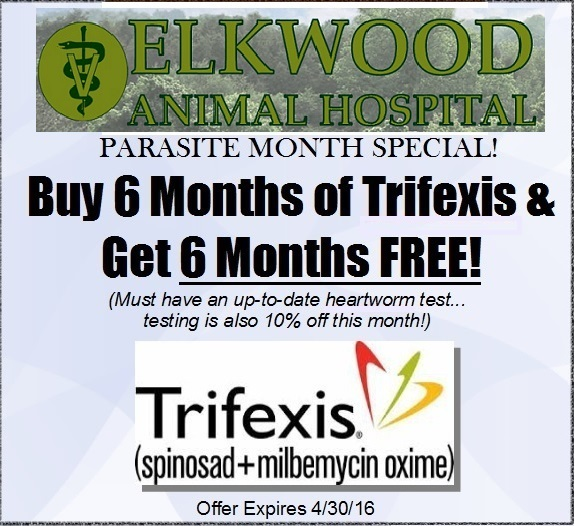 TrifexisCouponElkwood_1