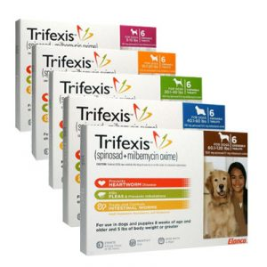 Trifexis is dosed by weight. Bring your dog in for a weigh in today and get some BOGO heartworm, gutworm, and flea preventative.